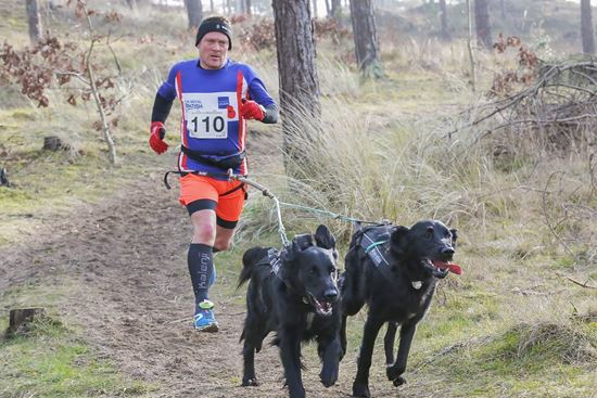 Picture of Canicross  2nd&3rd March 2019